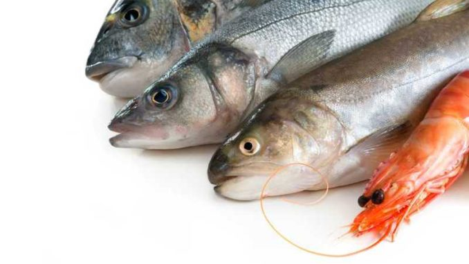allergie-crustaces-poissons